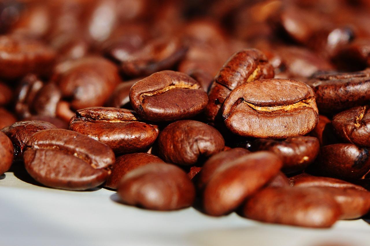 Pochodzenie ihistoria kawy